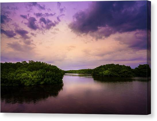 Tampa Bay Rays Canvas Print - Islands by Marvin Spates