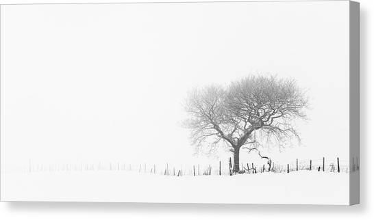 Canvas Print - Isolation 01 by Richard Nixon