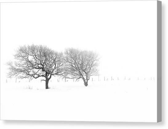 Canvas Print - Isolation 02 by Richard Nixon