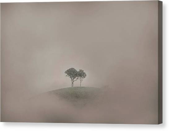 Wine Country Canvas Print - Isolation by Az Jackson