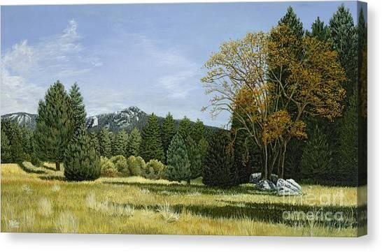 Isomata Meadow Canvas Print
