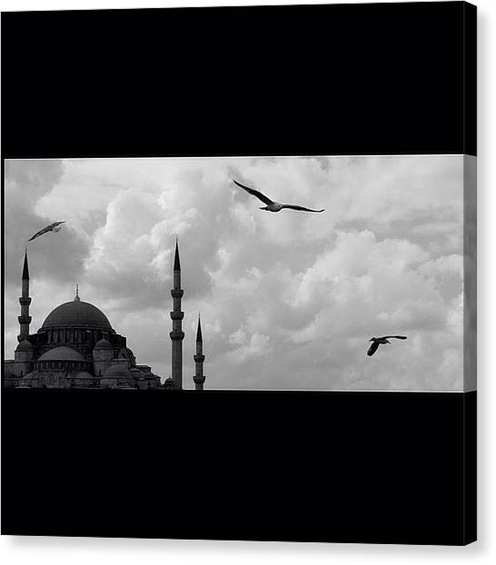 Water Birds Canvas Print - #istanbul #süleymaniye #cami #mosque by Ozan Goren