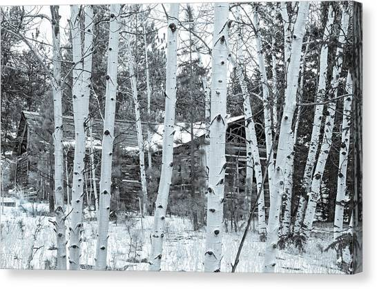 It Elicits A Feeling Of Nostalgia.  Canvas Print