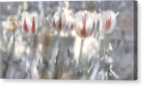 It Was A Beautiful Day Canvas Print by Inesa Kayuta