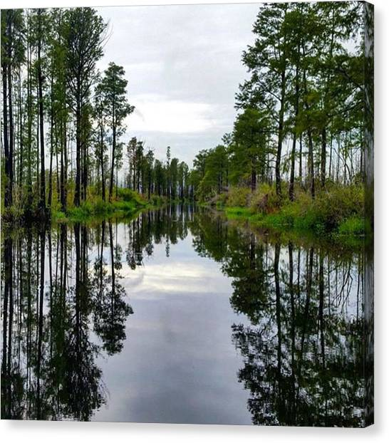 Okefenokee Canvas Print - It Was A Day Of Reflection On The by Karen Breeze