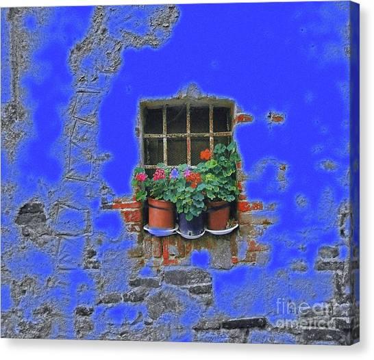 Italian Wallflowers Canvas Print