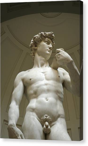 Statue Canvas Print - Italy, Florence, Statue Of David by Sisse Brimberg & Cotton Coulson
