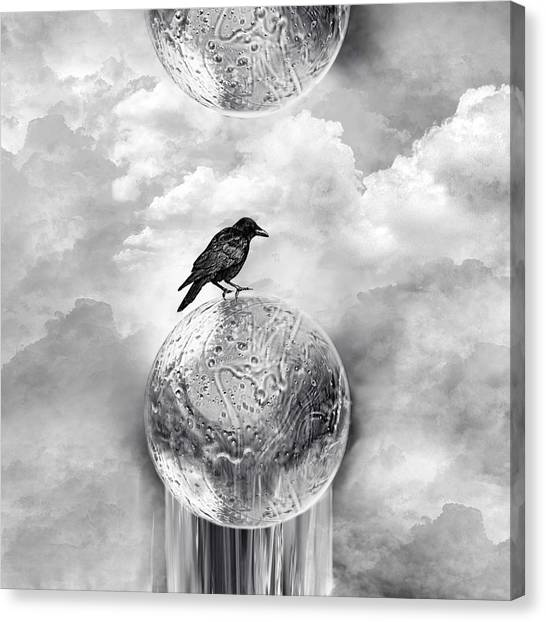 It's A Crow's World Canvas Print