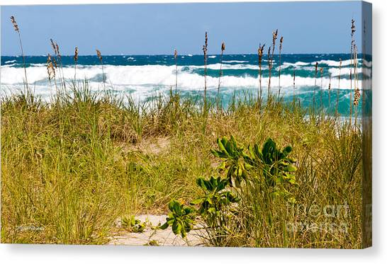 Its A Shore Bet Canvas Print