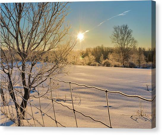 It's A Warm Cold... Canvas Print