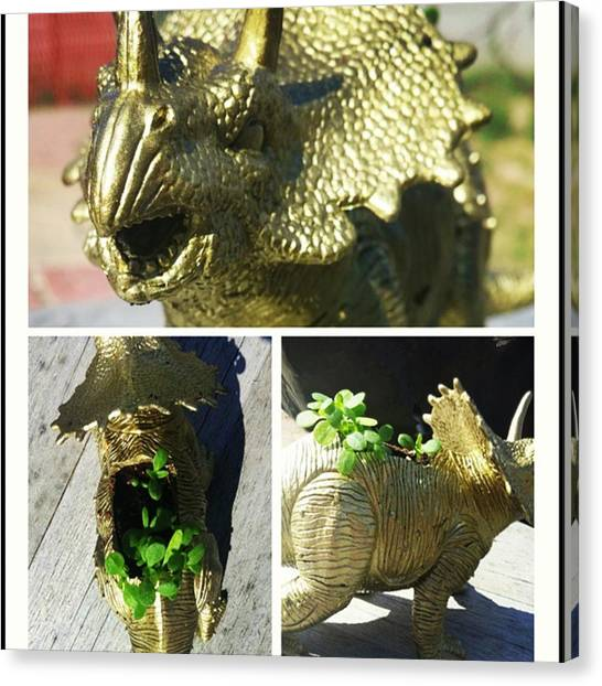 Triceratops Canvas Print - Its Alive! Ive Been Trying To Grow This by Cynthia Thom