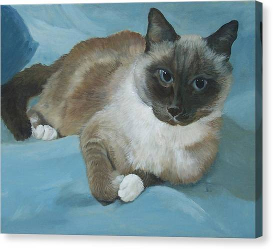 Itty Bitty Kitty Canvas Print by Audrie Sumner