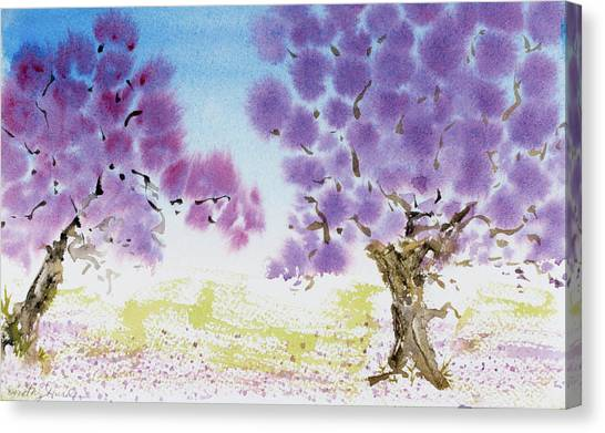 Jacaranda Trees Blooming In Buenos Aires, Argentina Canvas Print