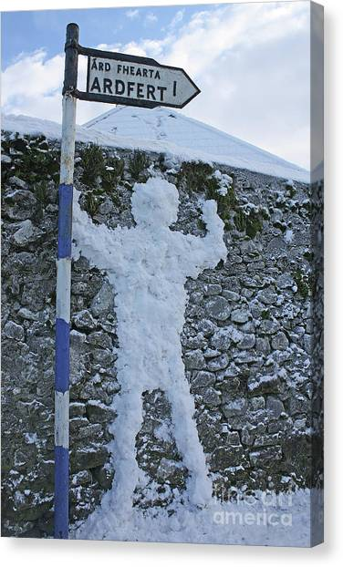 Jack Frost Got Lost Canvas Print by Laura Horgan