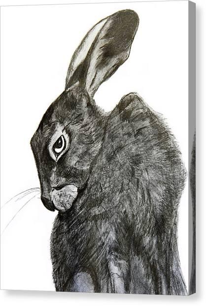 Jackrabbit Jock Canvas Print