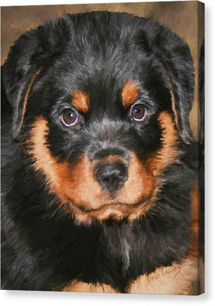 Rottweilers Canvas Print - Jacob by David Wagner