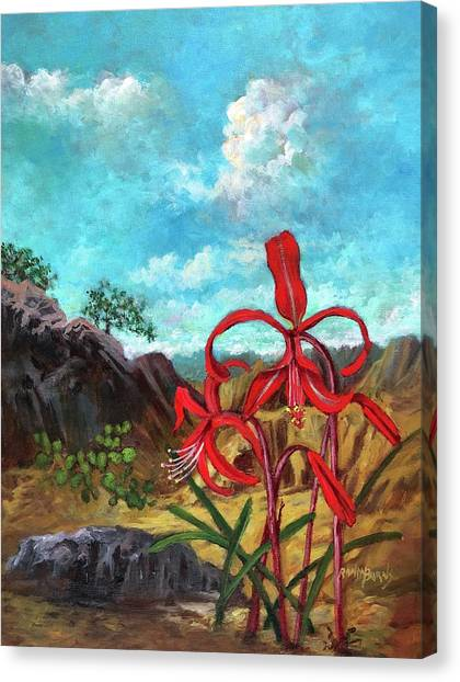 Jacobean Lily Of Mexico Canvas Print