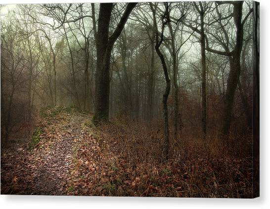 Jacomo Trail Canvas Print by Michael Rosell