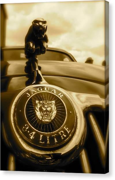 Jaguar Car Mascot Canvas Print