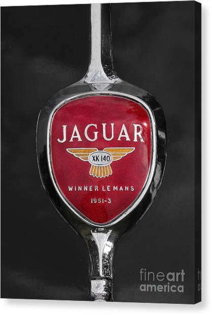Jaguar Medallion Canvas Print