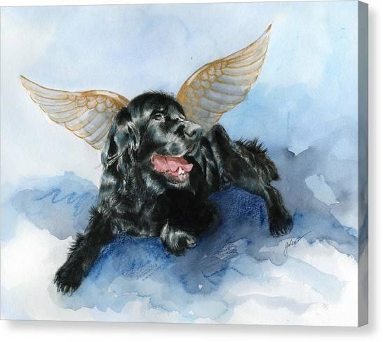 Jake Angel Canvas Print by Galen Hazelhofer