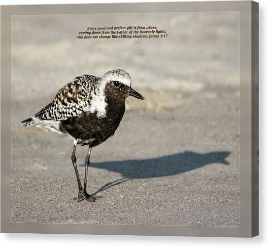 Canvas Print featuring the photograph James 1 17 by Dawn Currie