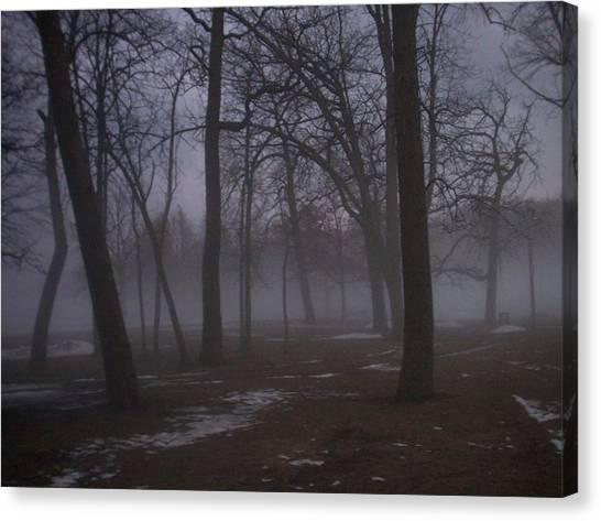 January Fog 2 Canvas Print