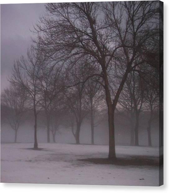 January Fog 4 Canvas Print