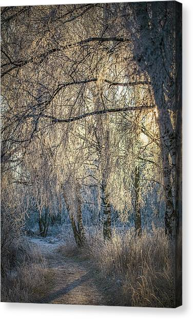 Canvas Print featuring the photograph January,1-st, 14.35 #h4 by Leif Sohlman
