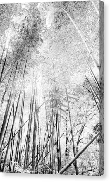 Japan Landscapes Canvas Print