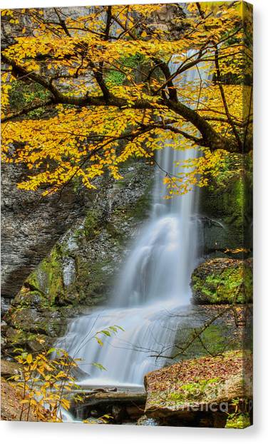 Japanese Falls Canvas Print