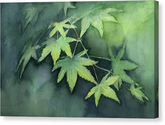 Maple Leaf Art Canvas Print - Japanese Maple  by Olga Shvartsur