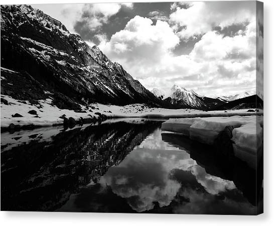 Canvas Print - Jasper 8 by The Artist Project