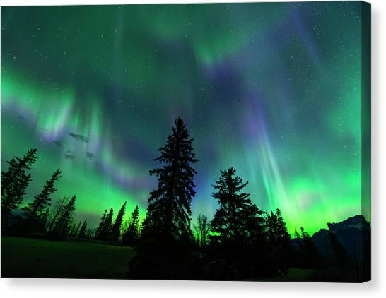 Jasper National Park Aurora Canvas Print