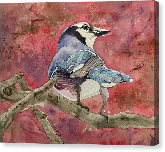 Jay In The Japanese Maple Canvas Print