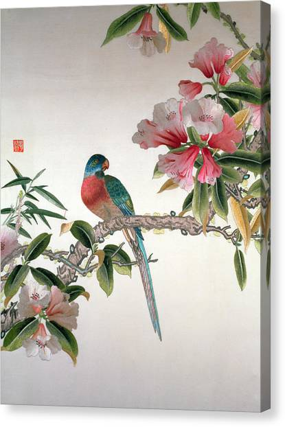 Bluejays Canvas Print - Jay On A Flowering Branch by Chinese School