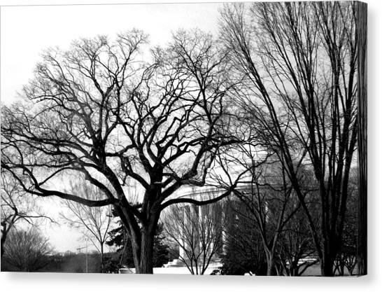 Jefferson Memorial - Distant View Canvas Print by Fareeha Khawaja