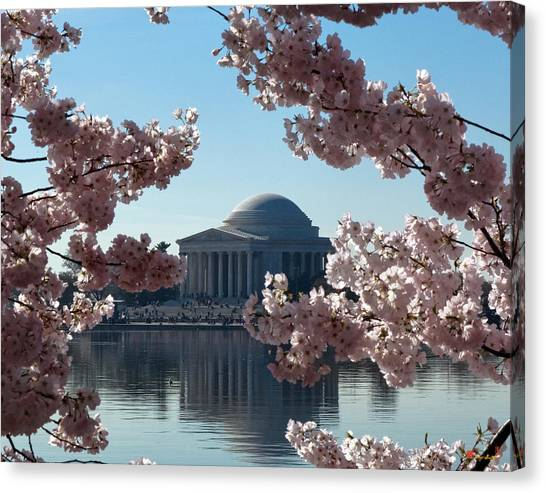 Jefferson Memorial At Cherry Blossom Time On The Tidal Basin Ds008 Canvas Print