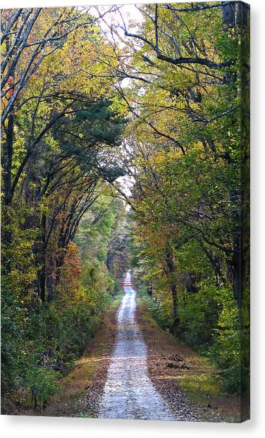 Great Dismal Canvas Print - Jericho Trail by Mike Cockrill