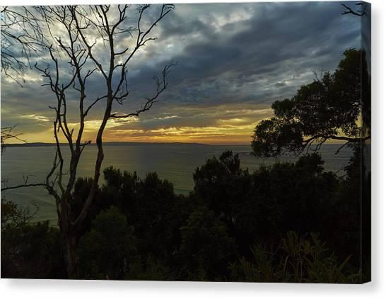 Jervis Bay Sunrise Canvas Print