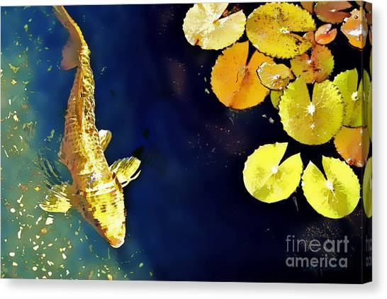 Lily Pond Canvas Print - Jewel Of The Water by Barb Pearson