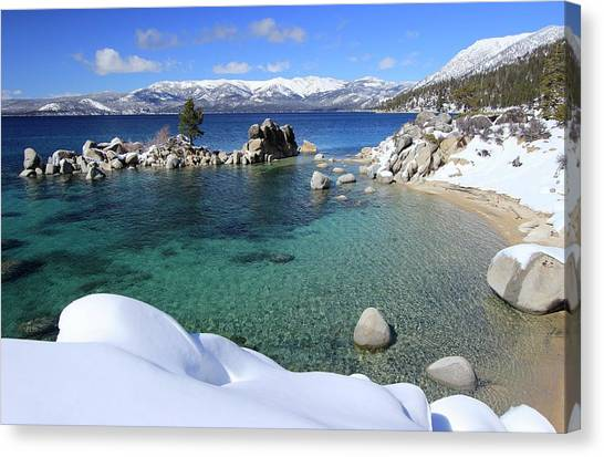 Canvas Print featuring the photograph Jewels Of Winter by Sean Sarsfield