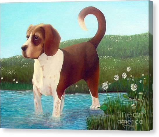 Jibbs Canvas Print by Susan Clausen