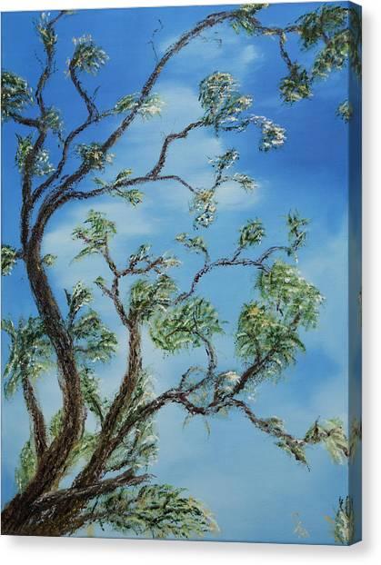 Jim's Tree Canvas Print