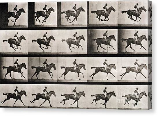 White Horse Canvas Print - Jockey On A Galloping Horse by Eadweard Muybridge