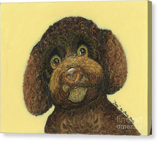 Joey Poodle Mix Canvas Print
