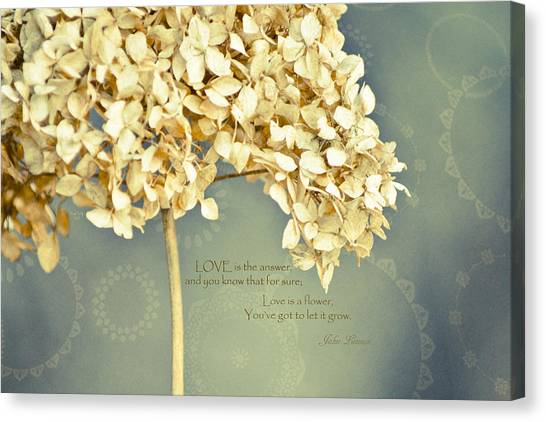 John Lennon Love Canvas Print