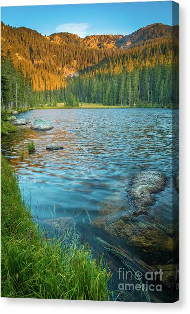 Cloud Forests Canvas Print - Johnson Lake Morning by Inge Johnsson