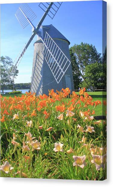 Cape Lily Canvas Print - Jonathan Young Windmill Summer Lilies Cape Cod by John Burk