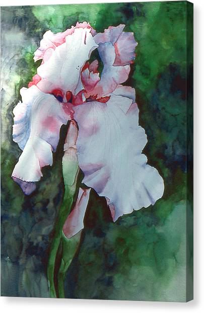 Jon's Iris Canvas Print by Eunice Olson